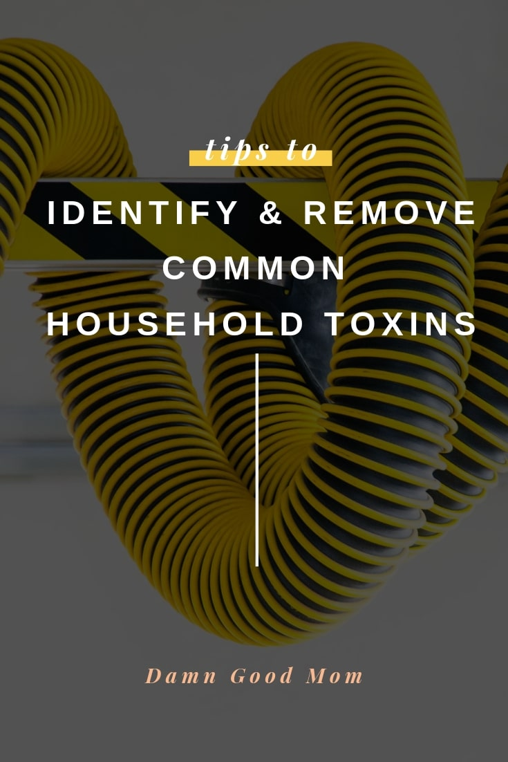 Identify and Eliminate toxins from homes